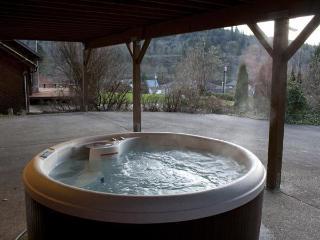 Harmony Retreat at Mayfield Lake - Mossyrock vacation rentals