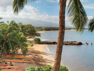 Nice Condo with DVD Player and Wireless Internet - Kihei vacation rentals