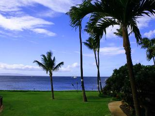MAALAEA SURF, #C-8 - Kihei vacation rentals