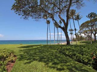 WAILEA ELUA, #1305*^ - Wailea vacation rentals