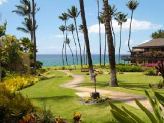 Perfect 1 bedroom Wailea Apartment with Hot Tub - Wailea vacation rentals