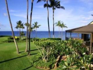 Lovely Condo with Hot Tub and DVD Player - Wailea vacation rentals