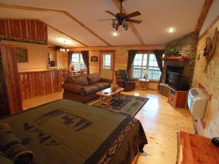 Lake Forest Cabins ,Beaver Lake Area 2-10 people - Eureka Springs vacation rentals