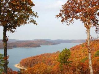 Lake Forest Cabins ,Beaver Lake Area 2-10 people - Eureka Springs vacation rentals