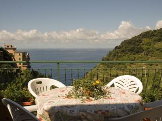 Beautiful Condo with Television and Wireless Internet - Corniglia vacation rentals
