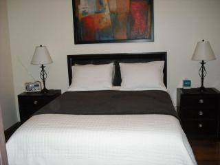 "3Bed/2 Bath ""Luxury"" ,20 min Time Square - New York City vacation rentals"