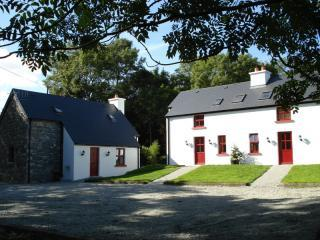 Nice Cottage with Internet Access and Fireplace - Kenmare vacation rentals