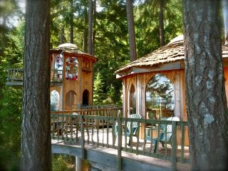 Forest House on Orcas......Enchantment & Wonder - Eastsound vacation rentals