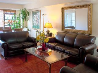 Beautiful & Spacious 3 BR/2 BA E57th St - New York City vacation rentals