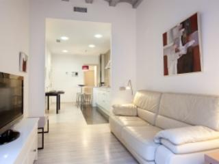 Ramblas Secret - Barcelona vacation rentals