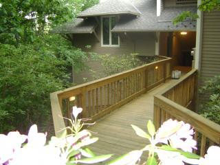 Wintergreen Mountain 2 or 3 K Masters Guest PASSes - Wintergreen vacation rentals