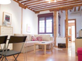La Latina Theatre apartment Madrid Historic Centre - Madrid vacation rentals