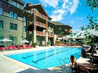 Elk Pool - Ritz Carlton Club Aspen Highlands - Aspen - rentals