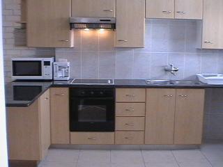 Fully-equipped open plan granite kitchen - Squirrel & Vine Self-catering Apartment - Stellenbosch - rentals