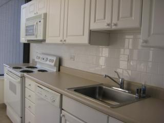 Stunning 1bd/1ba Downtown. Walk to Everything!!*** - Chicago vacation rentals