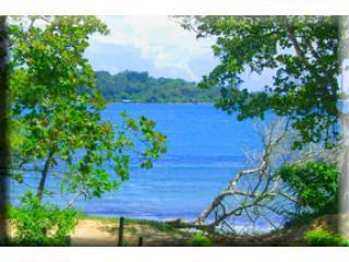 Jardines Vista del Mar Deluxe Condo - Bocas Town vacation rentals
