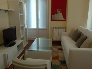 Bright Condo with Internet Access and A/C - San Sebastian - Donostia vacation rentals