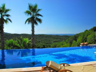 Luxury Barcelona villa for groups. Stunning pool - Sitges vacation rentals