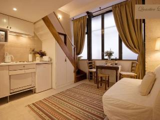 Super Central Apartment in the Historic Latin Quar - Paris vacation rentals