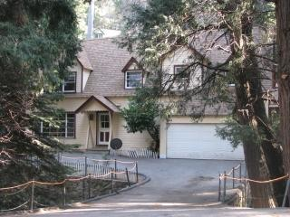 Granny Gert's Large Creekside Cabin Sleeps 20 - Lake Arrowhead vacation rentals