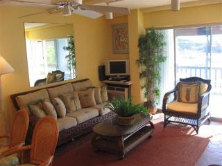 3 bedroom Condo with Deck in East End - East End vacation rentals