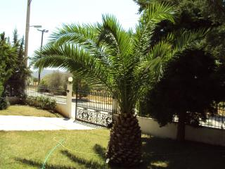 Athens, charming villa - Athens vacation rentals