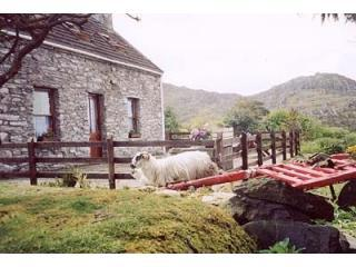 Traditional cosy  Stone Cottage with sea views - Kenmare vacation rentals