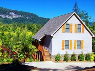 Large Home-Hot Tub-Fire Pit-Pool Table-Mtn Views - Lake Lure vacation rentals