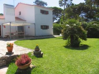 Beautiful 6 bedroom House in Sintra - Sintra vacation rentals