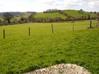 Rowan Cottage in Aish,Devon, overlooks Dart Valley - Ashburton vacation rentals