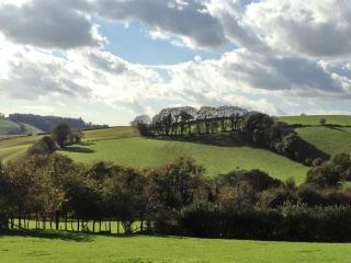 Rowan Cottage in Aish,Devon, overlooks Dart Valley - Stoke Gabriel vacation rentals