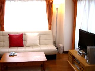 Your Luxury  2BR Apartment in Tokyo! - Nakano vacation rentals
