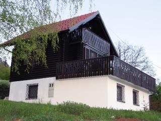 6 bed Traditional Alpine Chalet  - stunning views. - Ljubljana vacation rentals