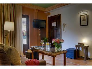 SUPERIOR Lounge & Kitchen - Apartamentos Muralla Ziri - SUPERIOR WITH BALCONY - Granada - rentals