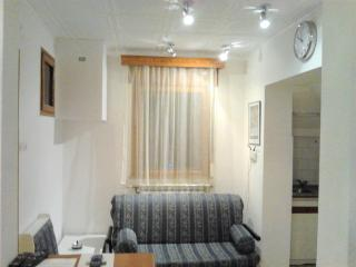 2 Rooms AMZEI very quiet in the historic center - Bucharest vacation rentals
