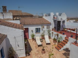 Casa Campana - Cosy, gorgeous, rustic apartment - Villamartin vacation rentals