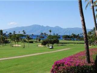 Maui Eldorado: Maui Condo A202 - Image 1 - Kaanapali - rentals
