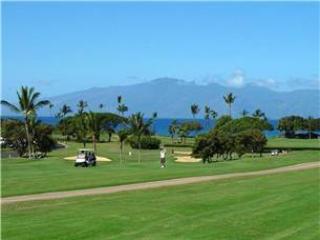 Maui Eldorado: Maui Condo A203 - Kaanapali vacation rentals
