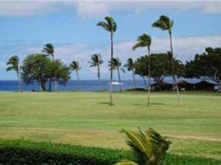 Maui Eldorado: Maui Condo J206 - Kaanapali vacation rentals