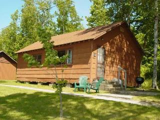 #10 MN Northwoods Fishing Cabin - Deer River vacation rentals