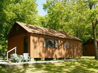 #2 Simplistic Cabin on the Lake - Deer River vacation rentals