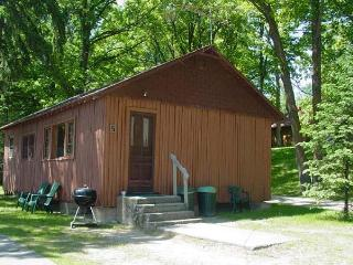 #5 Cabin Fever, Waterfront Central - Deer River vacation rentals