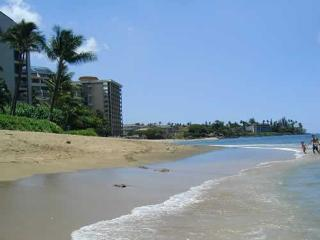CORNER 1BR RIGHT ON KAHANA BEACH! - Lahaina vacation rentals