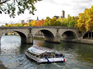 Cute Central Paris Island Studio FREE SEINE CRUISE - Paris vacation rentals