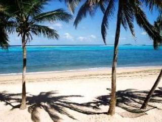 14-It\'s not a dream - it\'s real - Caribbean Paradise on the Beach - waiting for you - Christiansted - rentals