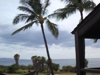 Hale Kamaole #309 -Spacious  2+ bdrm Kihei Condo - Kihei vacation rentals
