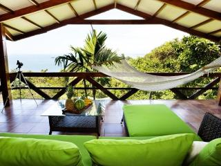 Ocean Views - Wildlife - Tulemar Beach - 4 Pools - Manuel Antonio National Park vacation rentals