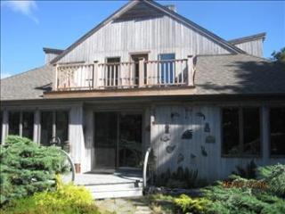 Nice House with Deck and Internet Access - East Orleans vacation rentals
