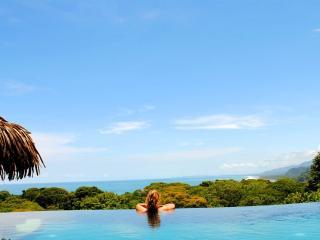 Villa Tucan Tango - Luxury-  Infinity Pool - Spect - Dominical vacation rentals
