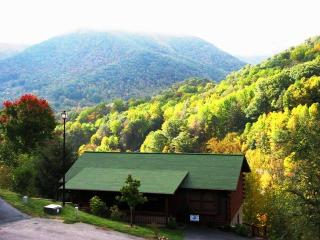 MT Views! Very Spacious /3 Mi. to SKI RESORT! - Maggie Valley vacation rentals